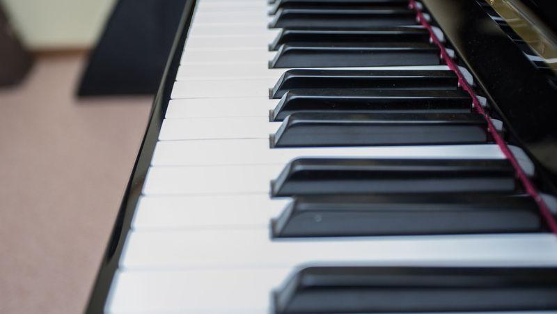 Тверские школы искусств получили новые музыкальные инструменты и оборудование