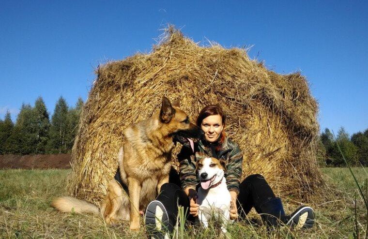 Куплю друга, недорого: тверской кинолог рассказывает, кому не стоит заводить собаку
