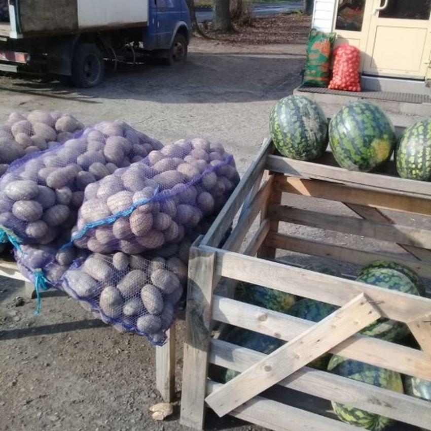 На рынке в Твери торговали подозрительными арбузами и картофелем