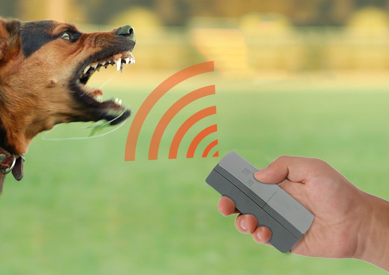 Для почтальонов Тверской области в ближайшее время закупят 1064 новых устройства для отпугивания собак