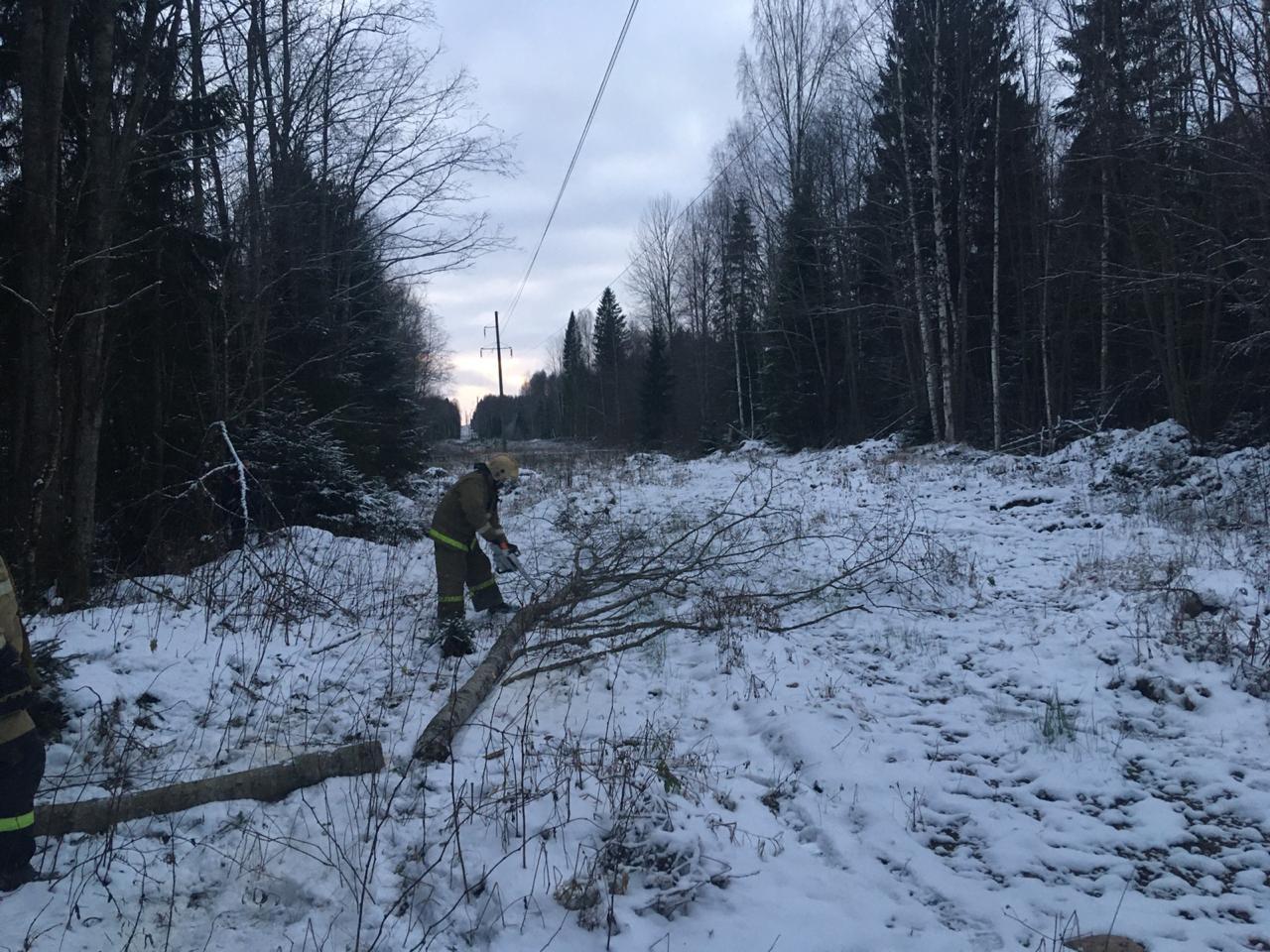 В Тверской области за ночь восстановлено электроснабжение 5800 человек
