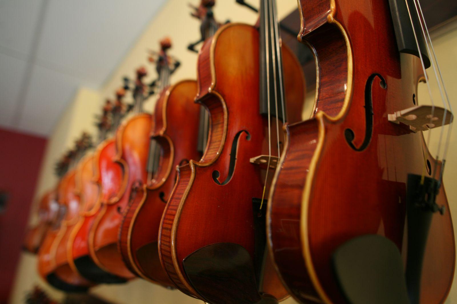В тверской музыкальной школе проведут лекцию о скрипке