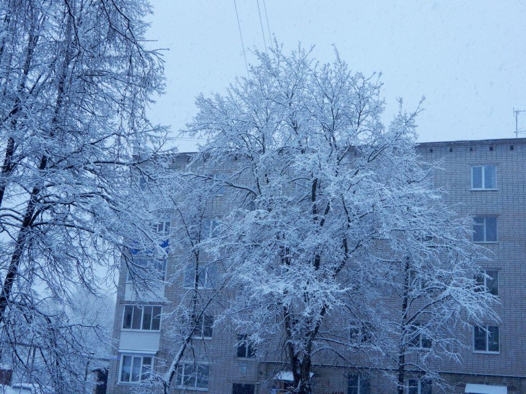 В Твери прошел первый снегопад