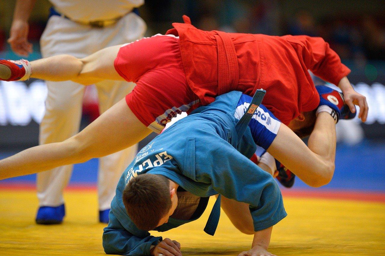 Чемпионат Всемирной федерации боевого самбо пройдет в Тверской области