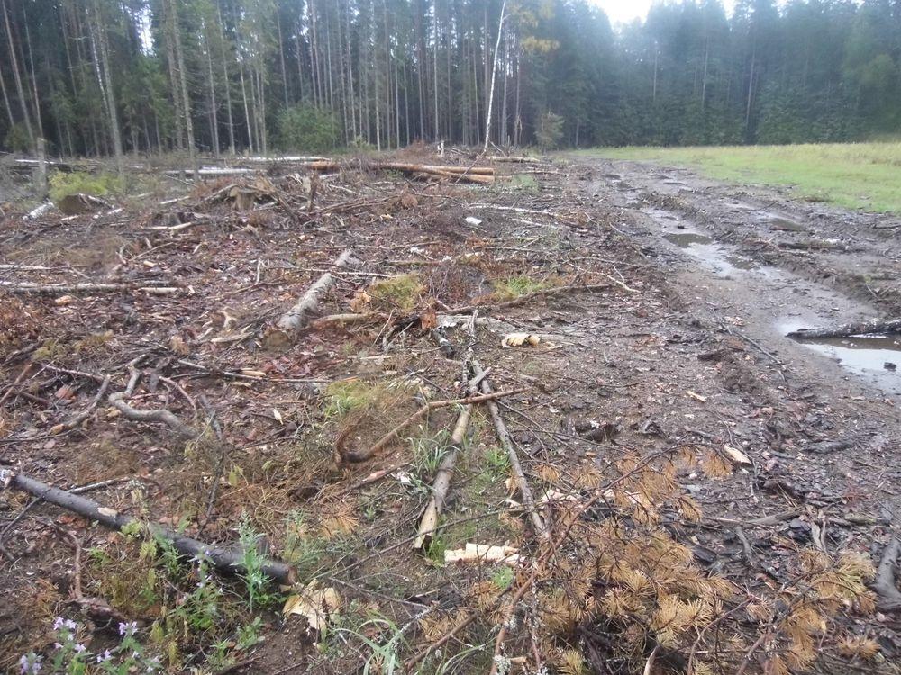 В Тверской области предприниматель оштрафован за порчу земли нефтепродуктами