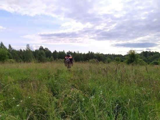 Жителей Оленинского района позвали в лес на поиски пенсионера