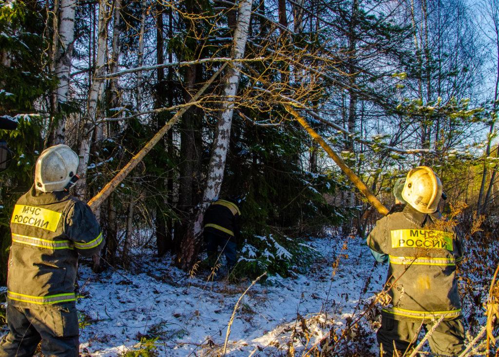 Итоги недели: Мой бизнес, новая лесопожарная техника и обеспечение бесперебойного электроснабжения