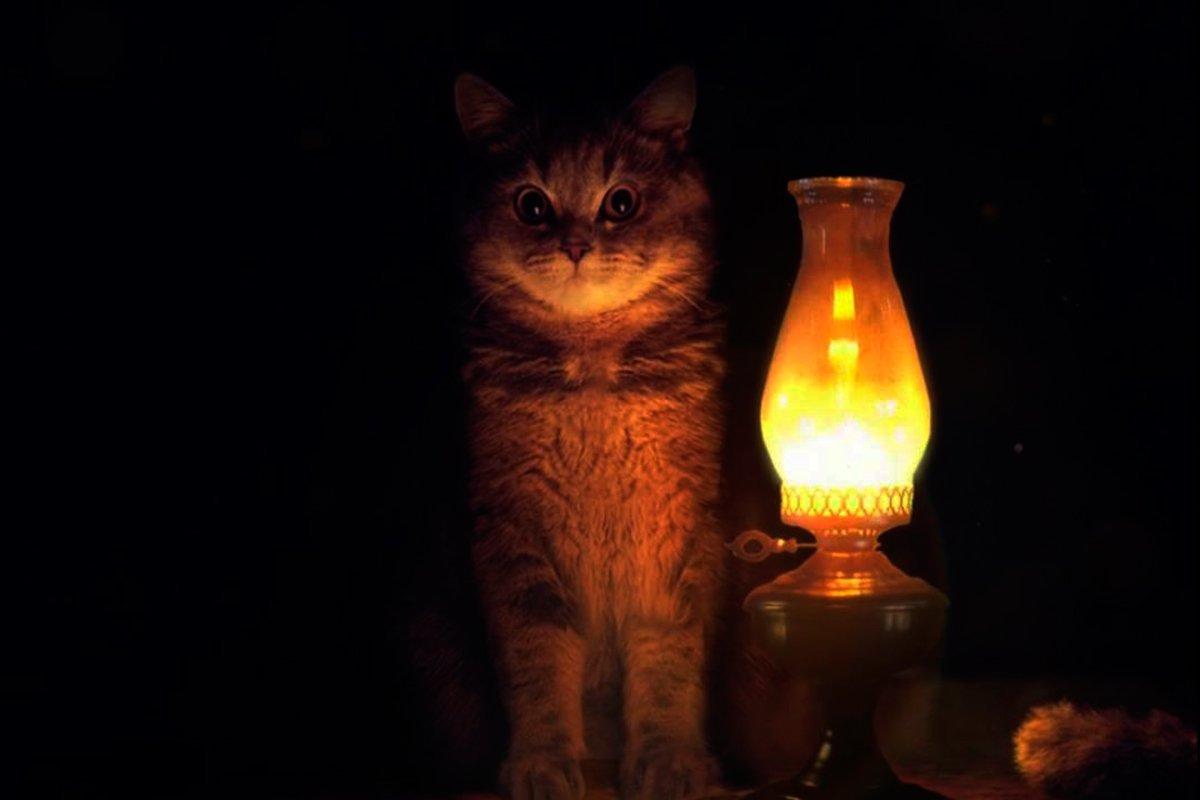 В Твери вновь не будет света