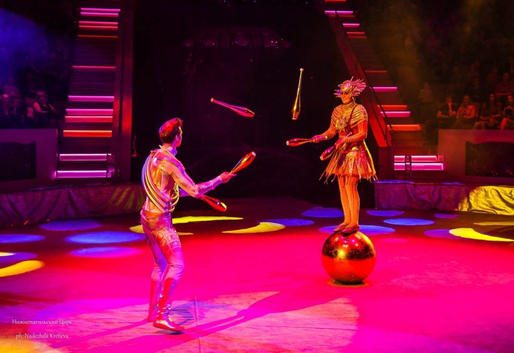 Тверской цирк приглашает бесплатно посетить открытую репетицию программы «Звездный круиз»