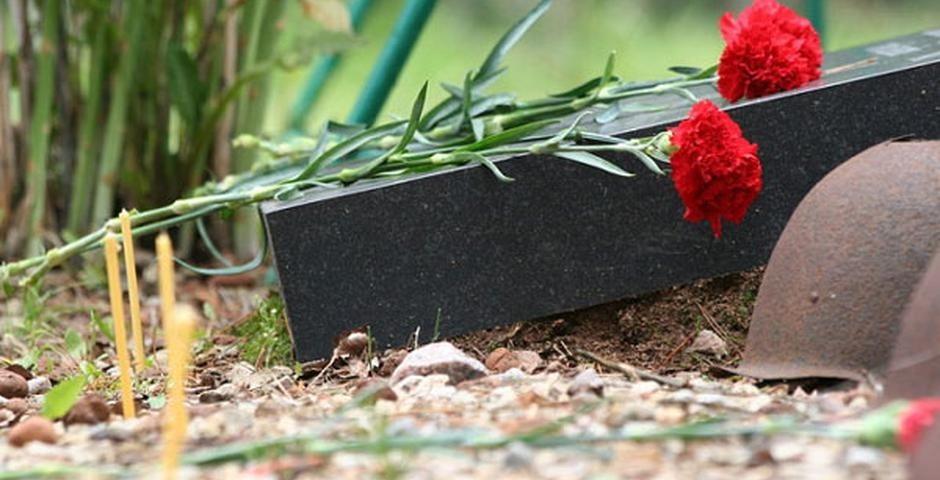 Ржевские поисковики подвели итоги «Вахты памяти»