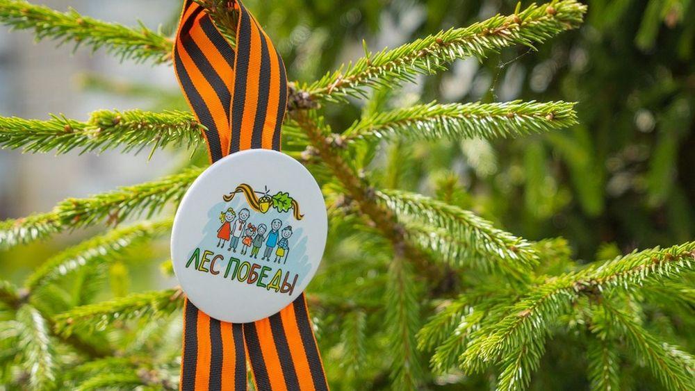 К 75-летию Победы на станции Бологое высадят именные деревья