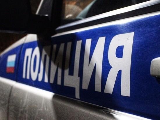 В поселке Оленино полиция оперативно задержала вора