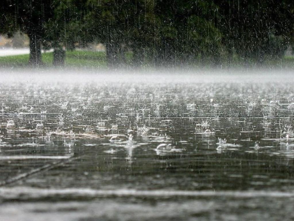 МЧС предупреждает о сильном дожде и ветре в Тверской области