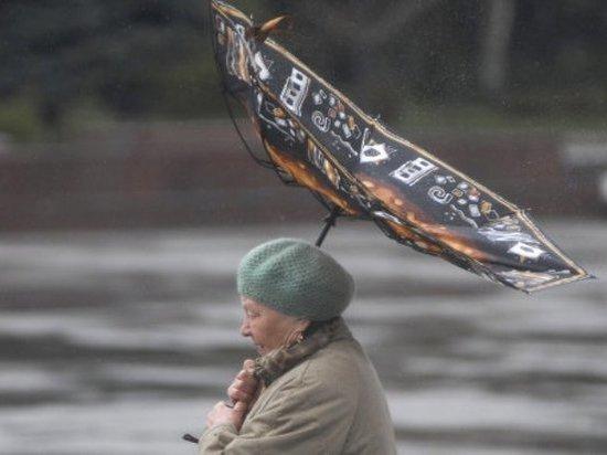 """Сильный ветер завёл Тверскую область в """"жёлтый"""" уровень опасности"""
