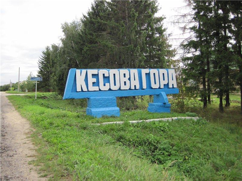 В Кесовогорском районе принимают предложения по благоустройству парка