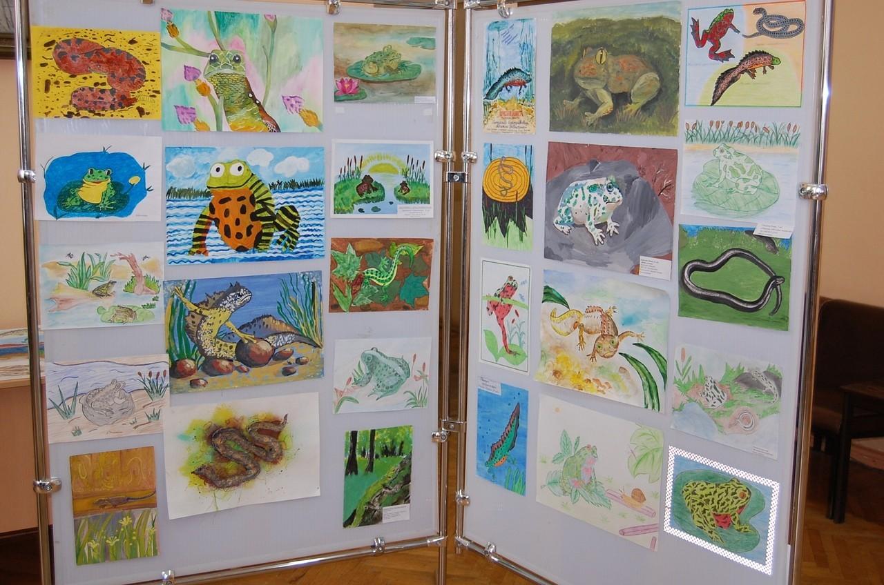 Стартовал конкурс рисунка «Красная книга Тверской области глазами детей. Живой символ региона»