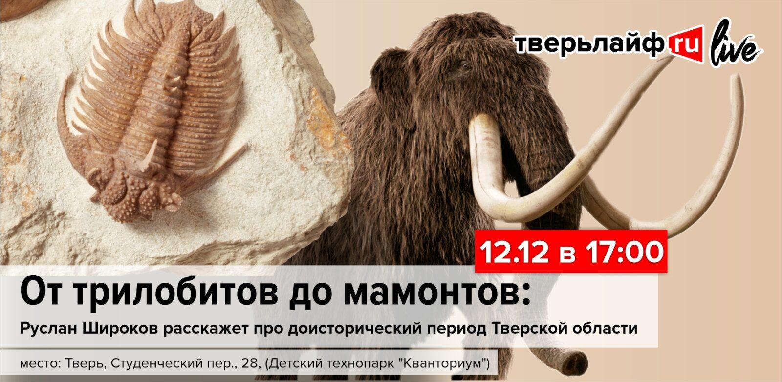 От трилобитов до мамонтов: в Кванториуме расскажут про доисторический период Тверской области