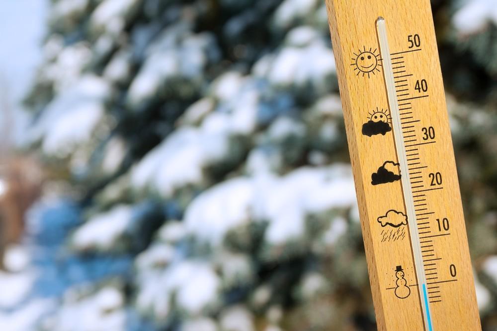 Зима в Тверской области продолжает оставаться аномально теплой