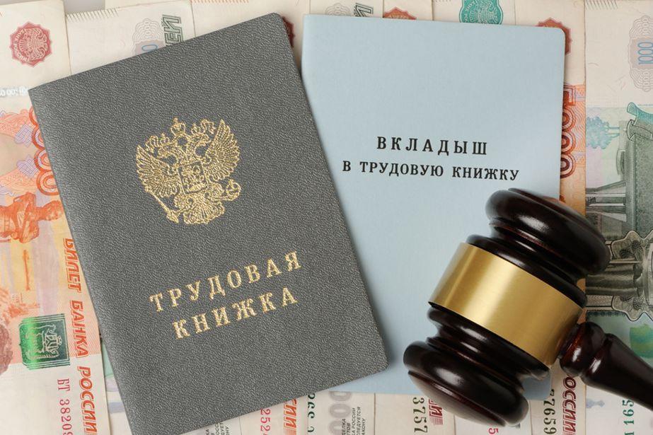 Цифровую трудовую книжку можно будет сделать в Тверской области