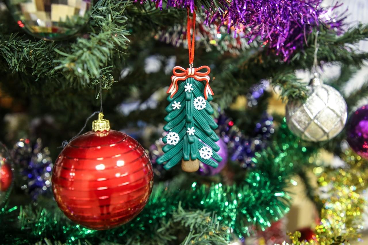 1500 детей из Тверской области пригласили на губернаторскую новогоднюю ёлку