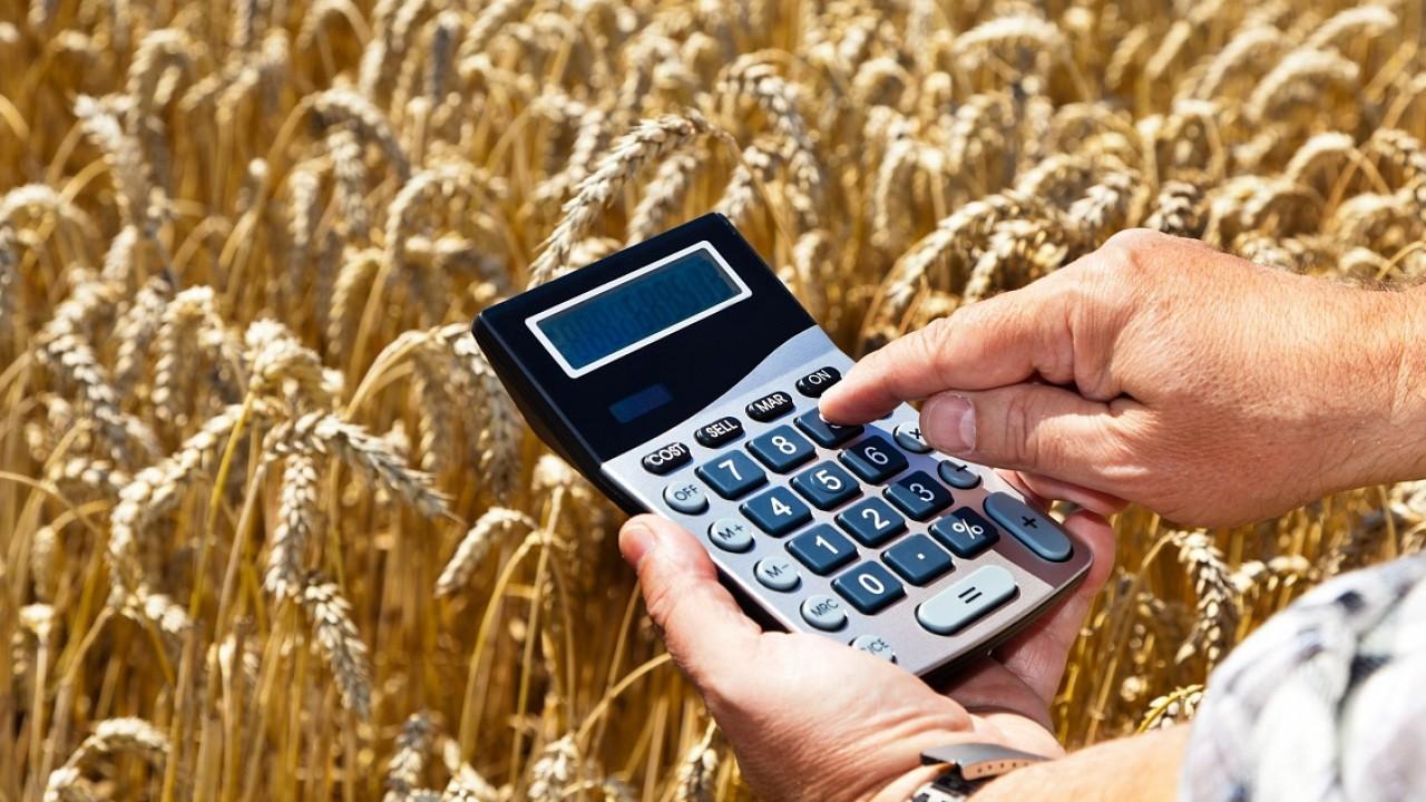 В Тверской области увеличена господдержка сельхозтоваропроизводителей