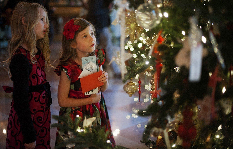 В Тверской области появились мошеннические сайты, продающие билеты на новогодние елки