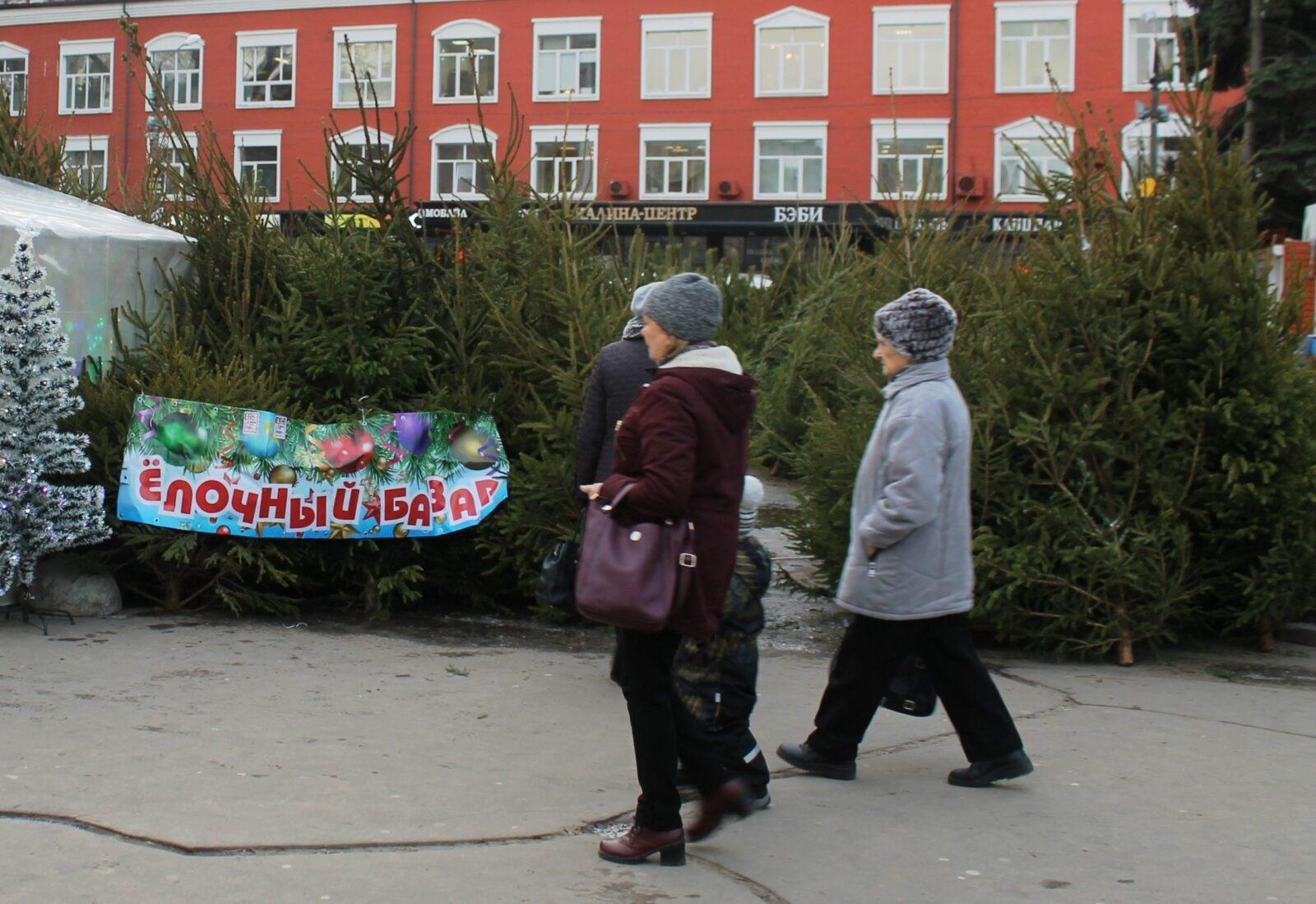 Первый елочный базар открылся в Пролетарском районе Твери