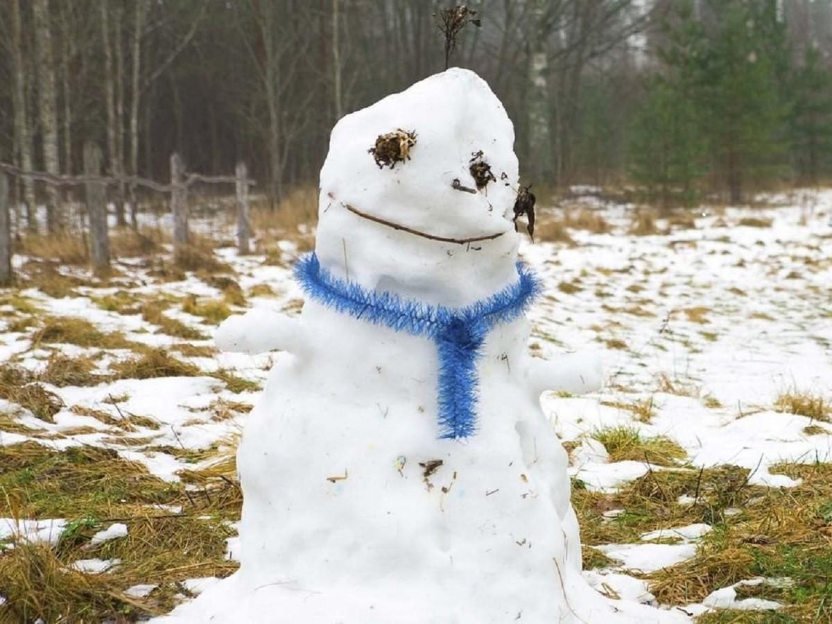 Зима  не собирается в Тверскую область