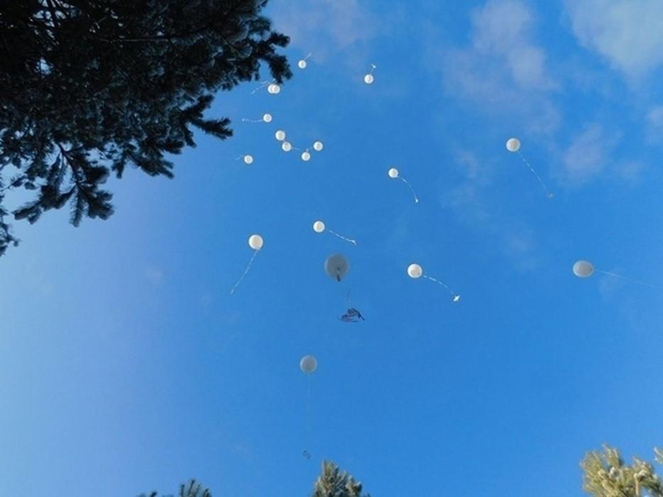 В Тверской области почтили память Неизвестных солдат