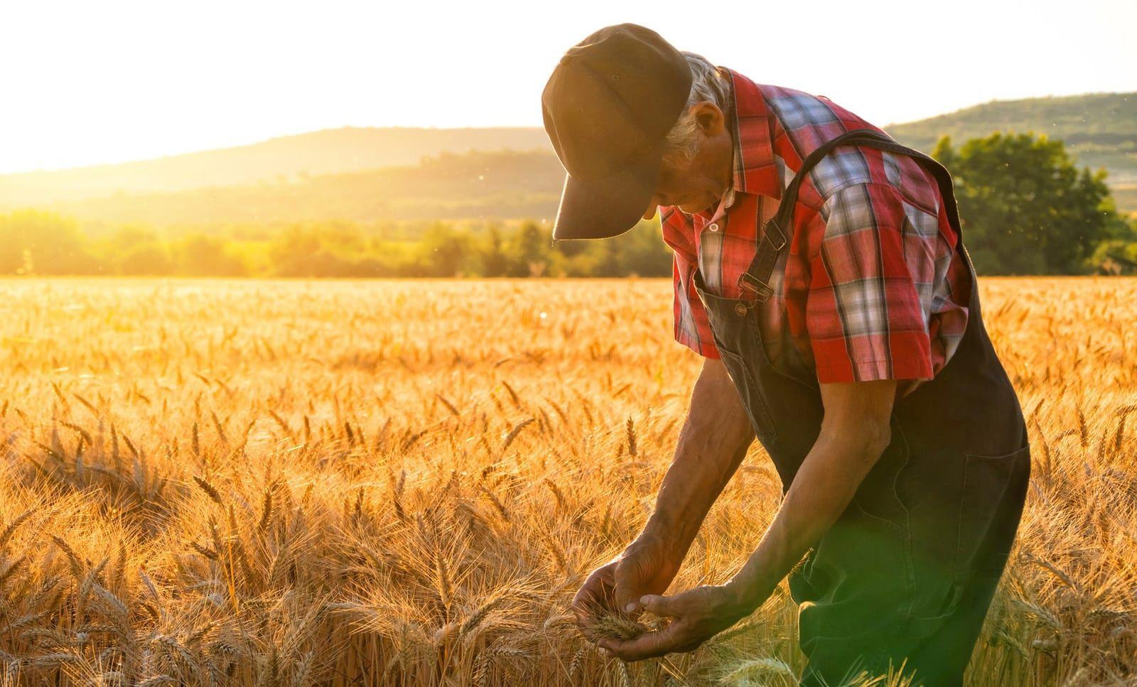 В Тверской области проходит региональный Слет фермеров