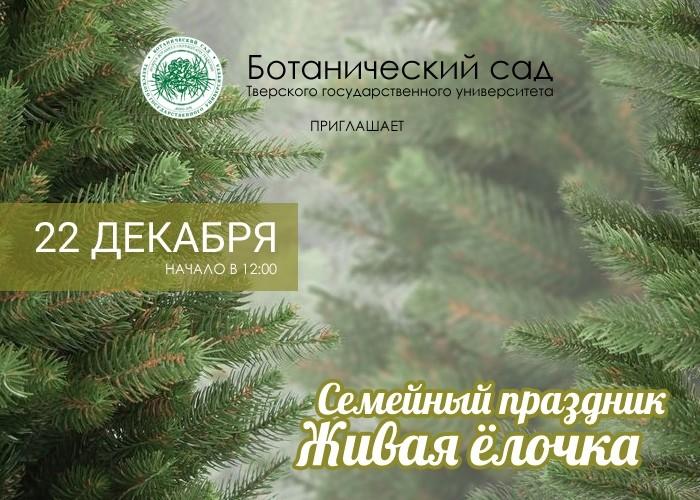 Жителей Твери приглашают украсить деревья в ботаническом саду