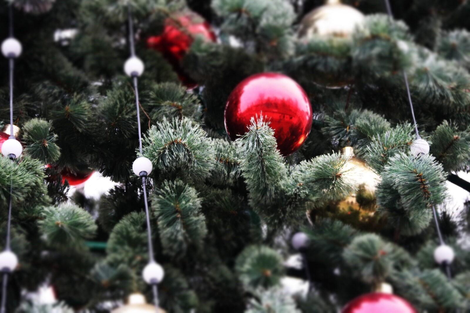 Жители Твери меняются новогодними подарками