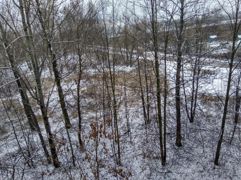 Тверь накрыло мокрым снегом