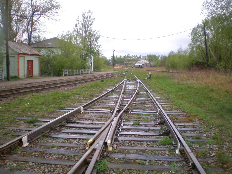 Жители Тверской области могут определить будущеежелезнодорожной линии Дорошиха - Васильевский Мох