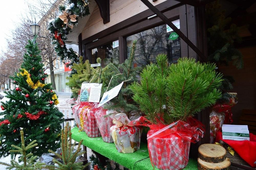 Сегодня в Твери откроется Рождественская ярмарка