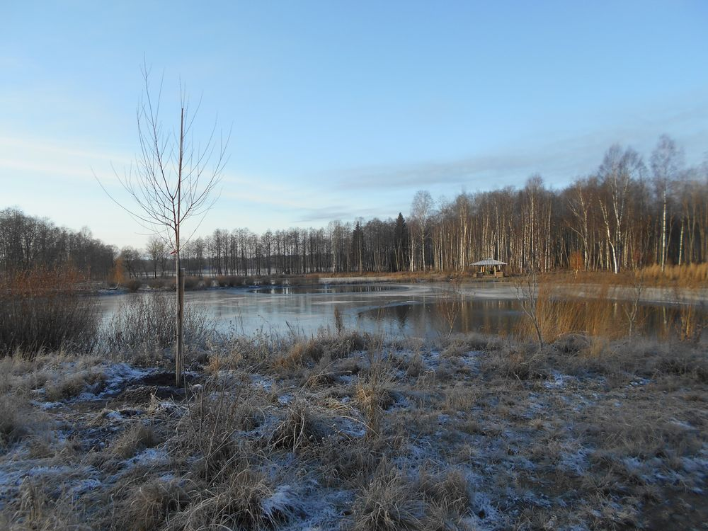Собственник земельных участков в Конаковском районе систематически не исполняет предписания надзорного органа