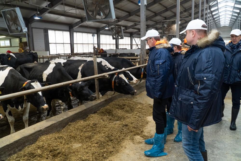 Потенциальный инвестор из Европы оценил сельское хозяйство Тверской области