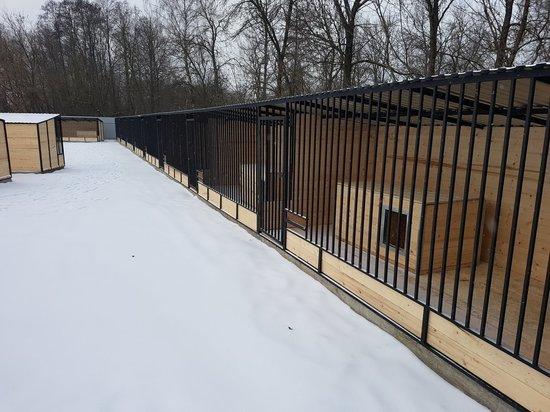 В Твери открыли приют для бездомных животных