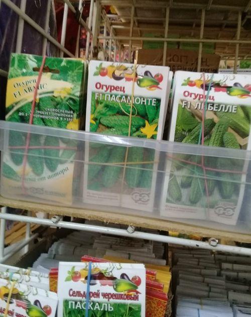 На рынках в Твери выявлены нарушения законодательства в области семеноводства и карантина растений