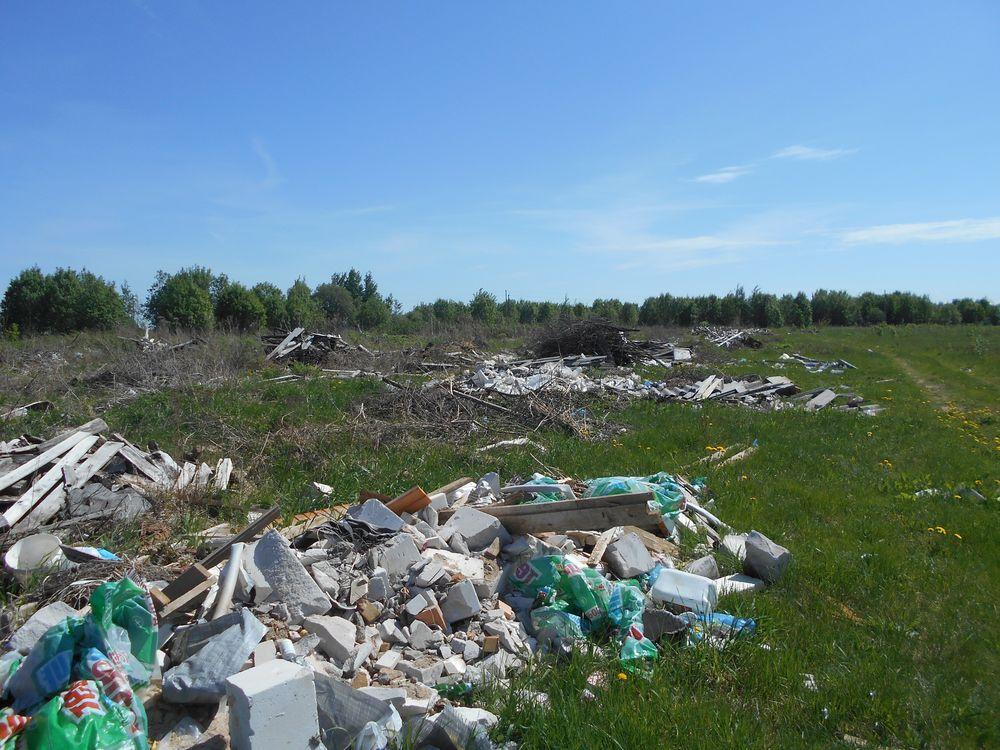 В Тверской области суд обязал собственника возместить ущерб, причиненный сельскохозяйственным угодьям