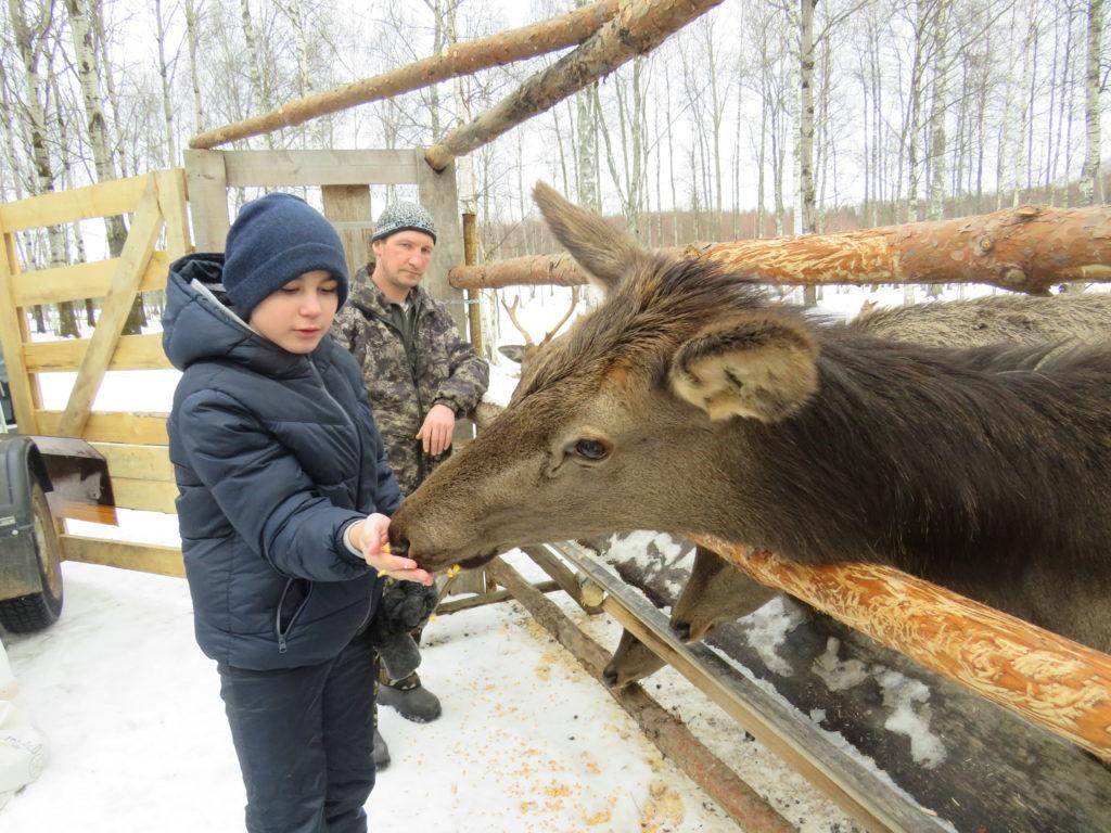 Ребята из социально-реабилитационного центра Твери побывали на оленьей ферме