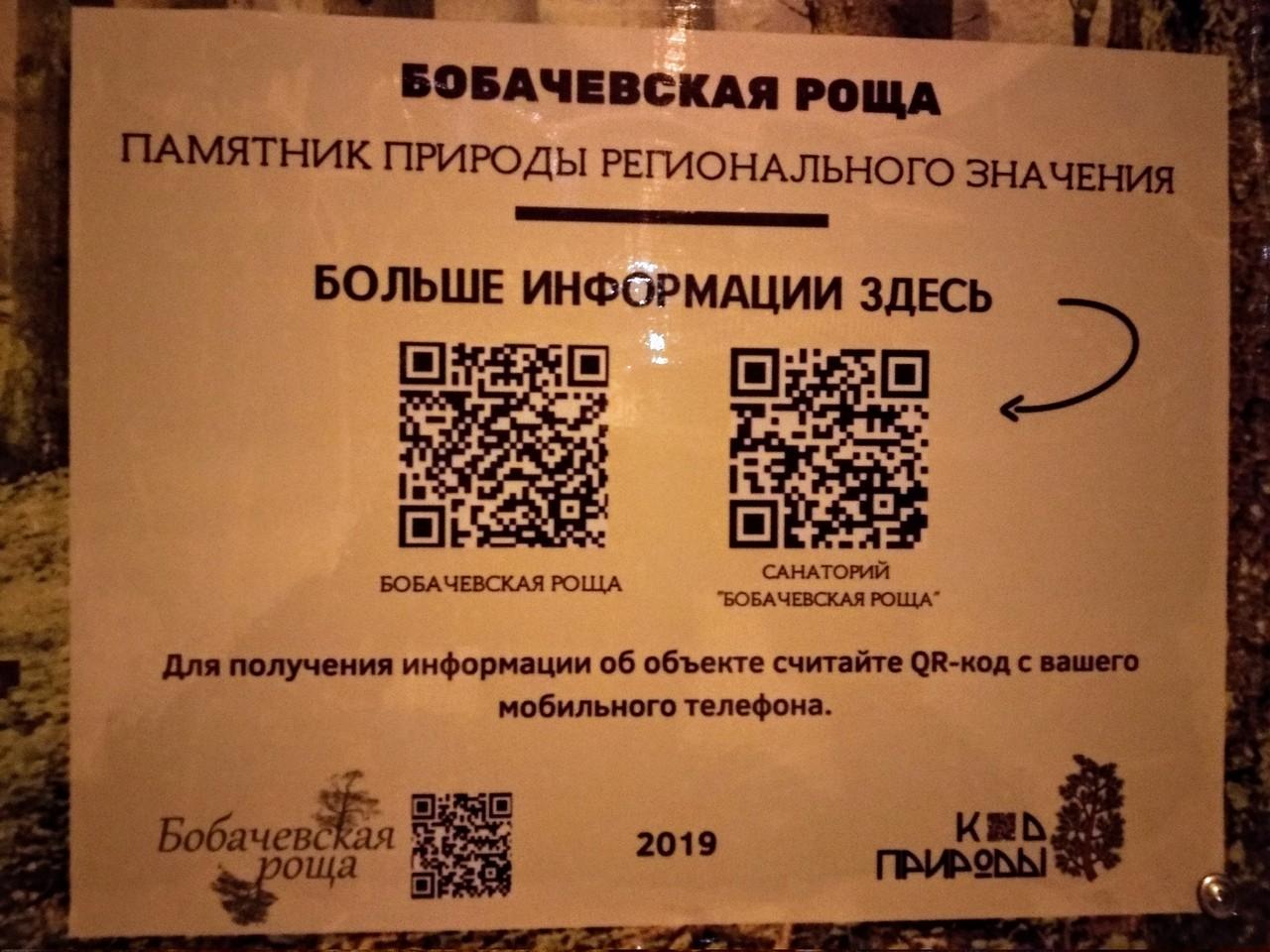 В Твери в Бобачевской роще появились информационные стенды с QR-кодами