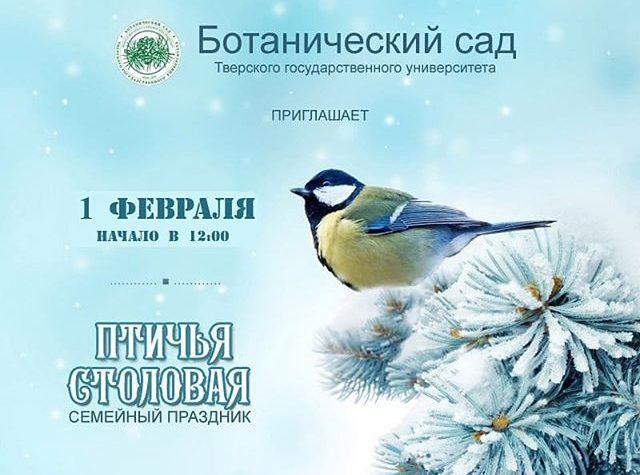 В Твери выберут лучшую кормушку для птиц