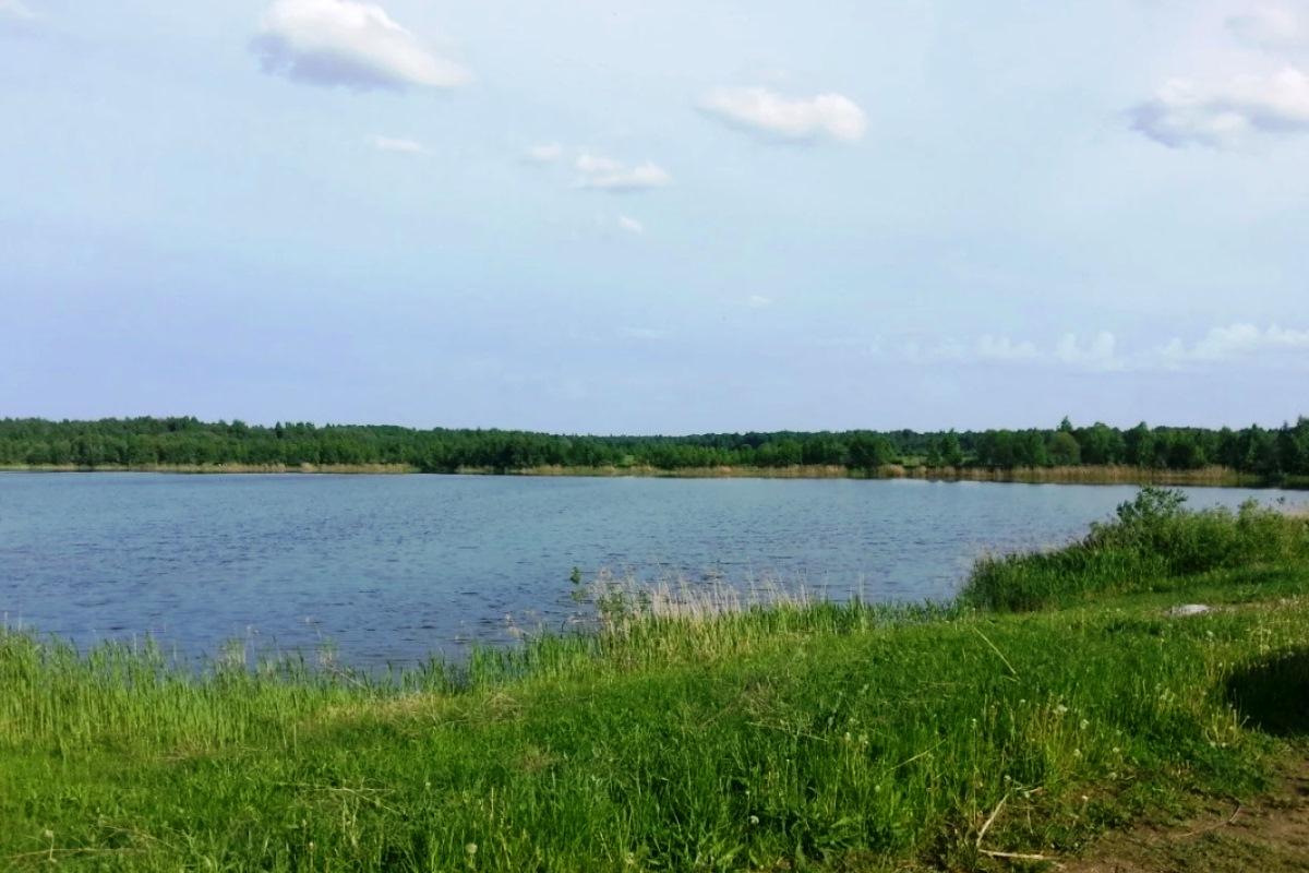 В Тверской области продают участок с рыбным озером за 15 миллионов рублей