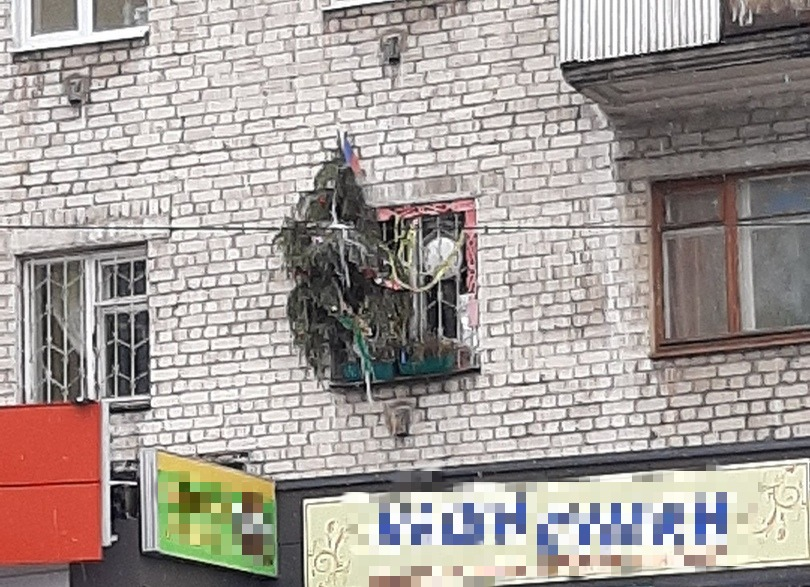 Житель Твери выставил одинокую новогоднюю ёлку за окно