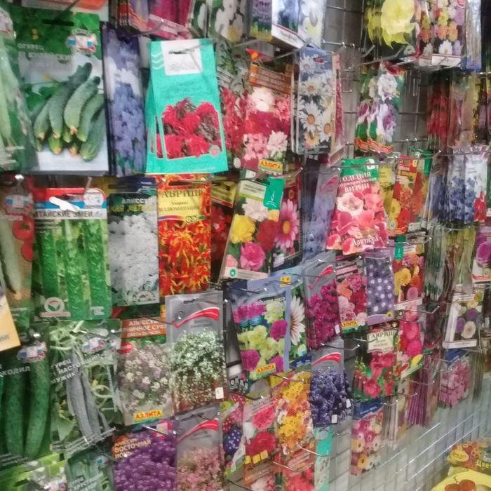 На рынке в Удомле торговали семенами без документов