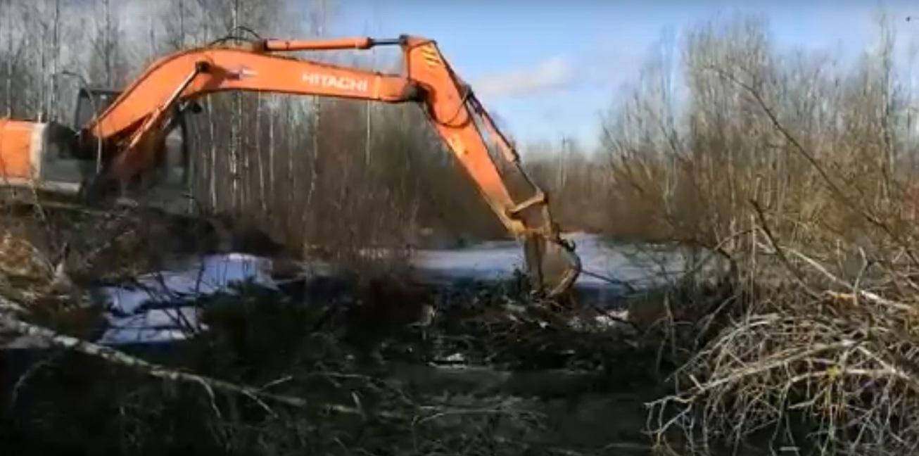 В Тверской области бобровая плотина угрожала затоплением райцентру
