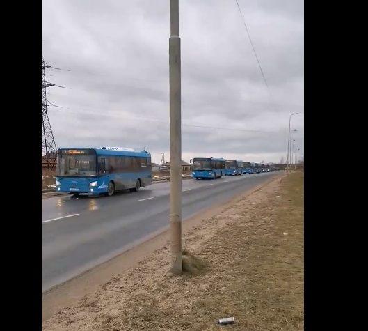 Житель Твери рассказал о своем отношение к автобусам Верхневолжья (видео)