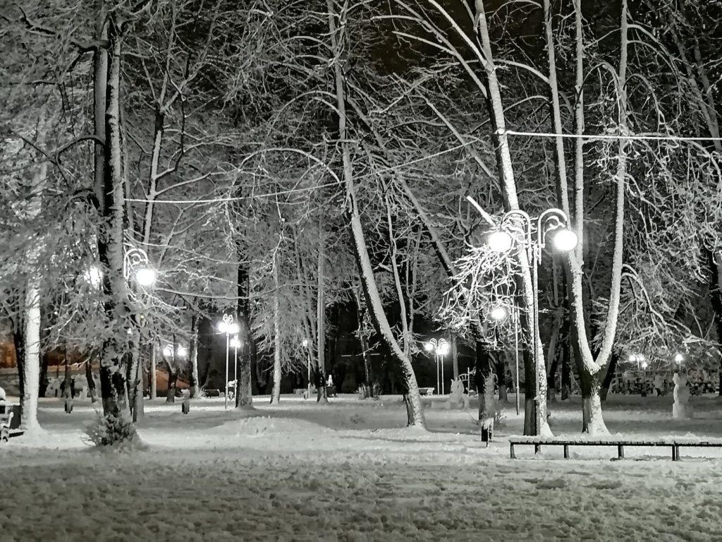 В Тверской области слепили забавных снеговиков