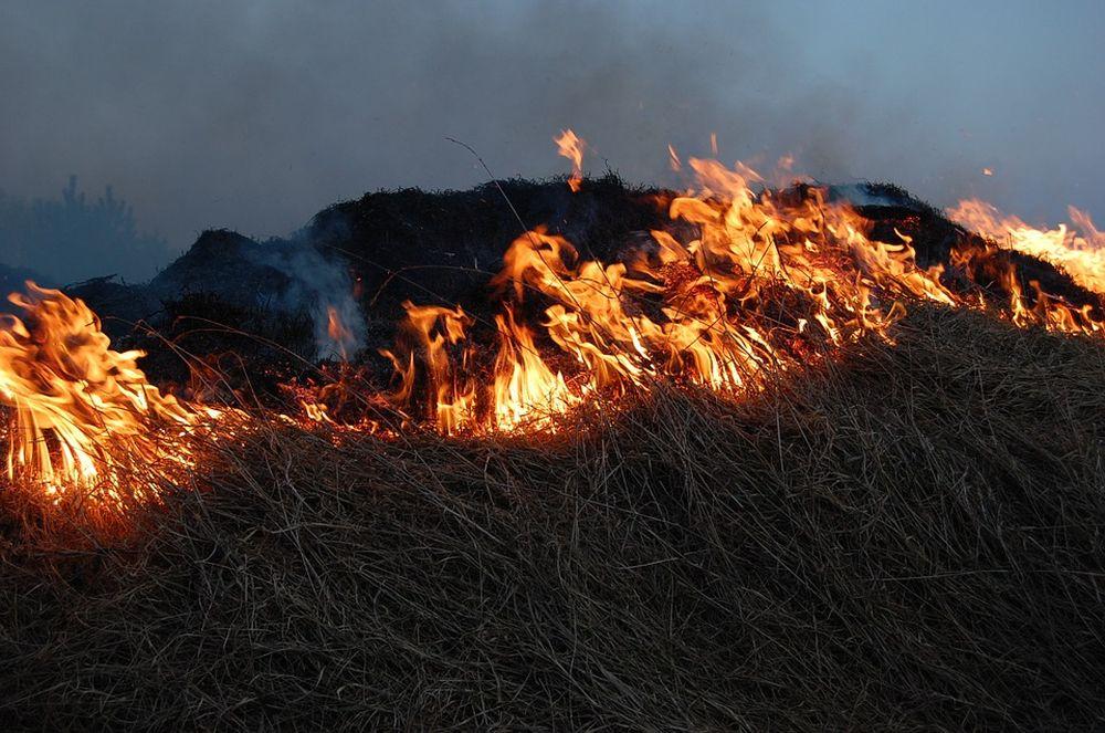 Об угрозе возникновения пожаров на землях сельхозназначения в предстоящем пожароопасном периоде
